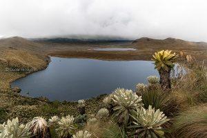 lanscape ecuador laguna