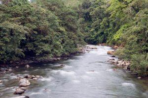 rio pachijal pedro vicente maldonado pichincha ecuador