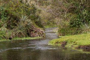 river sequia andes agua deshielo cotopaxi