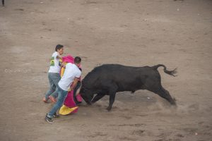 toreros cayambeños