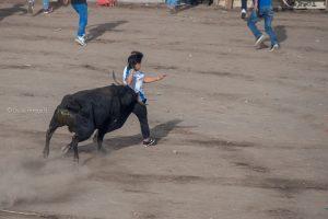 toros populares pueblo cayambe